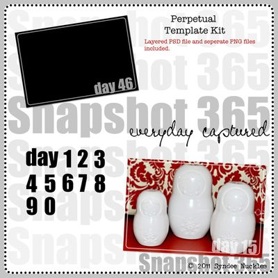 Snapshot365 Perpetual